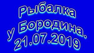 Рыбалка у Бородина 21 07 2019