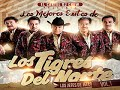 LOS TIGRES DEL NORTE MIX VOL 1