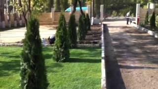 Рулонный газон укладка и доставка(, 2014-10-21T09:28:03.000Z)
