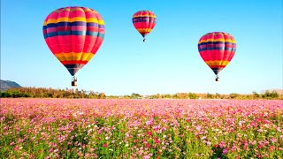 Solving Magic Jigsaw Puzzles 294 (140 pcs) Over a field of cosmos flowers screenshot 4