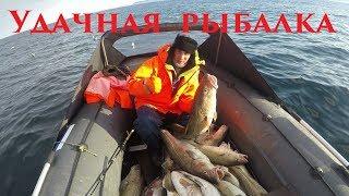 Удачная весенняя рыбалка / Треска / Successful spring fishing / Cod
