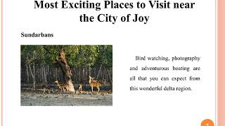 Most Exciting Places to Visit near the City of Joy | Tours, Travel and Trips to India | Logout World