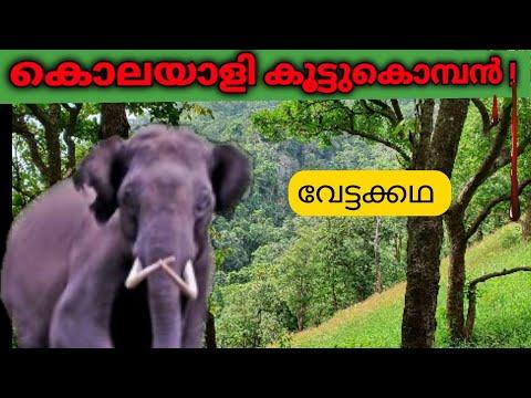 ഗെരെഹാട്ടിയിലെ ഒറ്റയാന്|kenneth anderson|Crossed Tusker of Gerehetti|Killer Elephant hunt|Malayalam