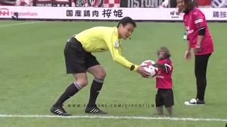 Piłka nożna-zwierzęta na boisku😃😃😄