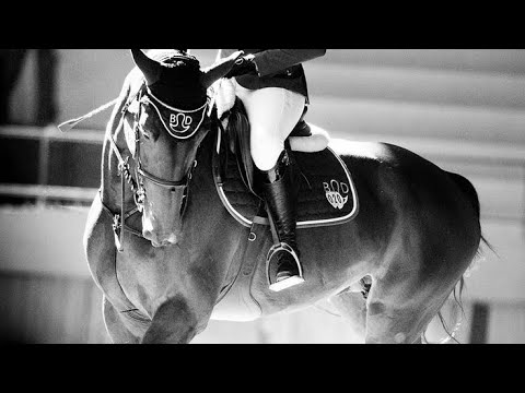 Despacito ~ Horse dressage music video