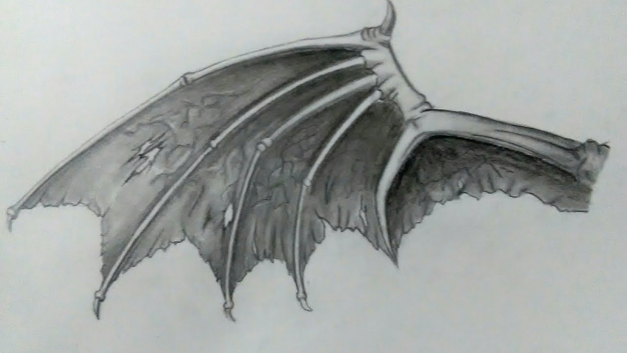 How To Draw Demon Wing Speed Drawing Demon Wing Youtube