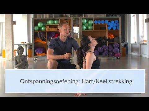 Behandelen met ehealth - Johanneke van Kreveld (Mindfit) from YouTube · Duration:  1 minutes 54 seconds