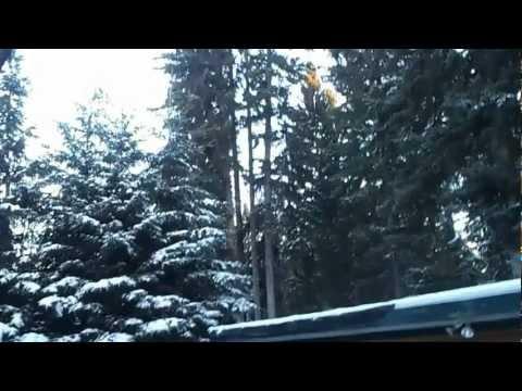 Strange sounds 2013 Alberta source caught on camera!!