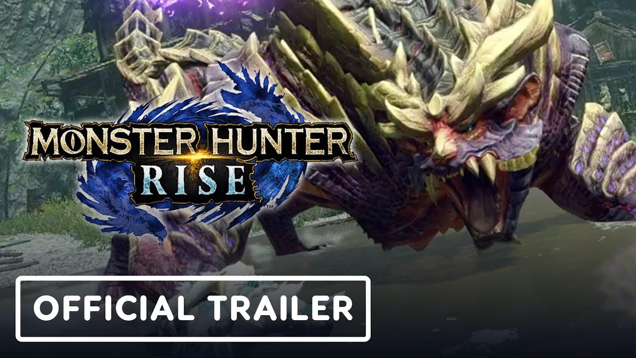 Hunter rise monster