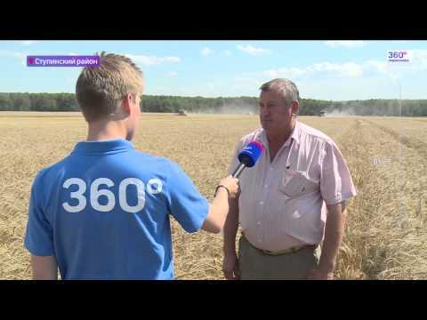 Урожай зерновых в Подмосковье вырастет на треть в 2015 году