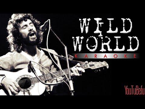 WILD WORLD KARAOKE