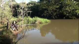 Pescaria Lambaris Jacaré-Guaçu 08/06/2...