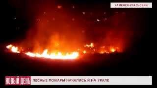 Лесные пожары начались и на Урале(Видеоновости РИА