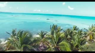 Saona Island Excursion - Punta Cana Adventures