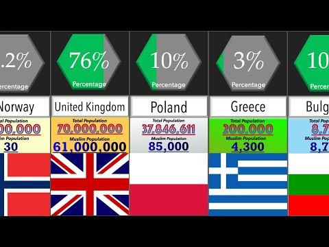 Muslim Population in European Countries   Percentage Comparison   DataRush 24