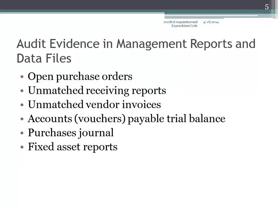 Audit Evidence in Management Reports and Data Files - YouTube
