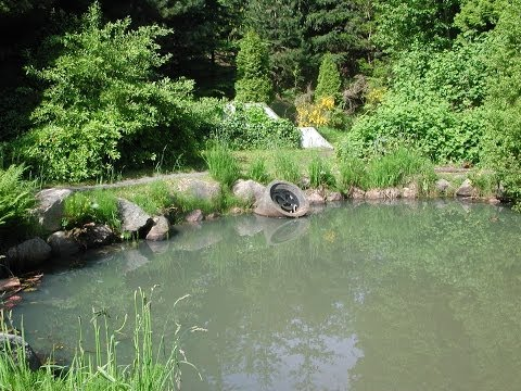 Innovative Stormwater Management at the Neighbourhood Scale