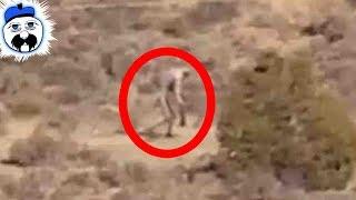 15 Weirdest Things Ever Found In The Desert