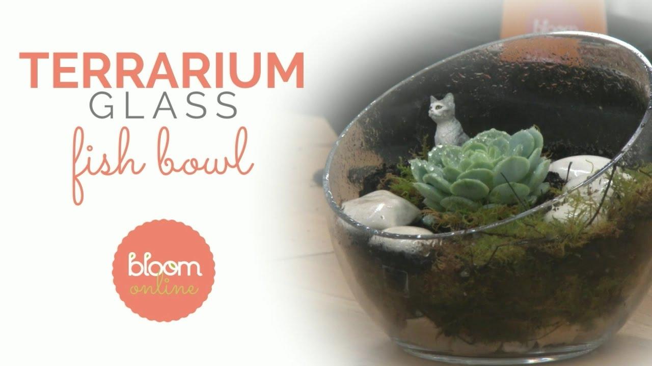 Make A Professional Glass Fish Bowl Terrarium Youtube