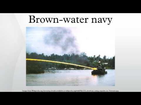 Brown-water navy