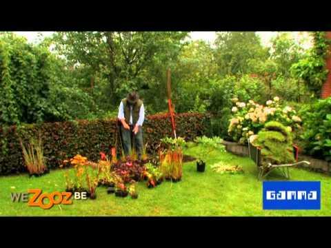 Borders aanleggen tuinadvies september gamma belgi for Bordes jardin