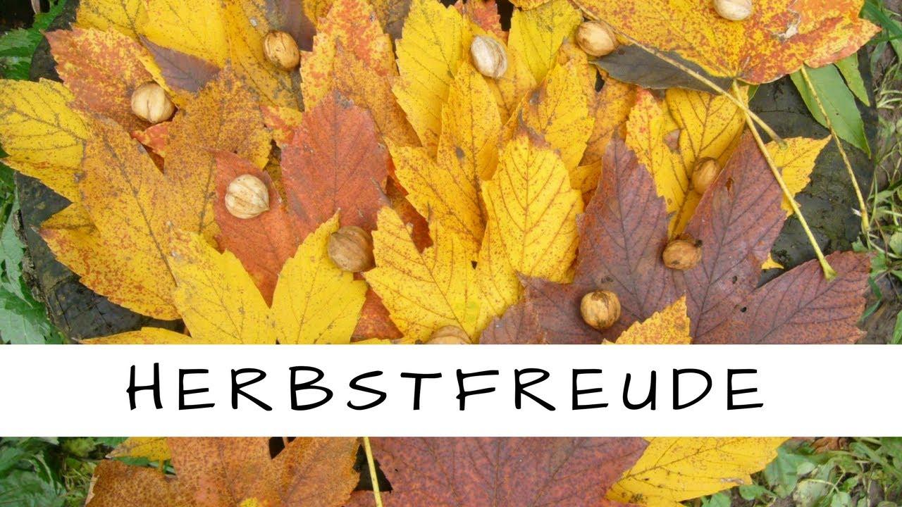 Herbstfreude - den Herbst mit Kinder feiern/ Natur/sammeln/basteln/zeichnen