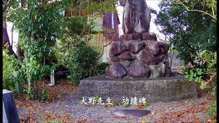 四万十市下田串江で、明治から医療に携わった赤ひげ(大野)先生は、貧...