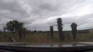 Cruising on a country road in Swaziland, Africa - Dash Cam