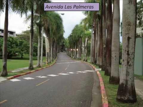 """EDPE 3129 - """"Universidad de Puerto Rico Recinto de Mayaguez"""""""