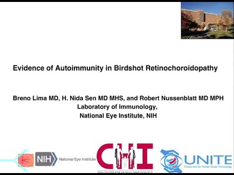 BSRC is an Autoimmune Disease - Robert Nussenblatt, MD, MPH