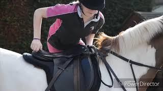 Клип про конный спорт