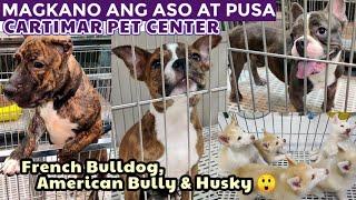 CARTIMAR PET PRICE UPDATE (French Bulldog, American Bully, Husky, ChowChow, Shih Tzu & More)