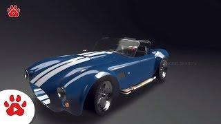 Cobra Replica Chvrolet Corvette Cadilliac Pursuit | Super Cars for Kids | #h Colour Song for Kids