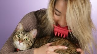 10 Increíbles productos para mascotas