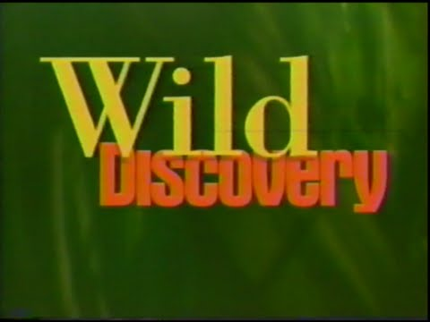 Wild Discovery: The Story Of America's Great Volcanoes