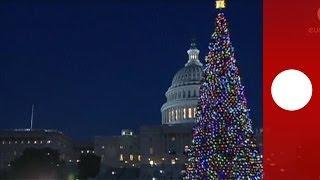 USA: größter Weihnachtsbaum am Capitol entzündet