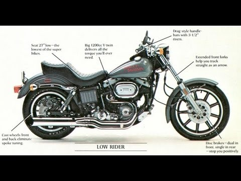 harley davidson internal and external analysis View essay - h-d's internal and external business analysis - copy from informatio ist700 at pink nail of newyork running head: harley-davidson: external and internal analysis argosy.