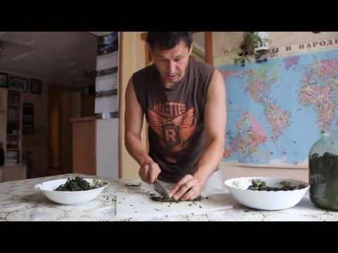 Секреты заготовки и ферментации Иван-чая.