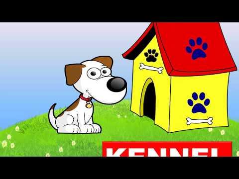 Animals Homes Names, Types - Lesson for Kids -Kindergarten,Preschoolers,Grade 1