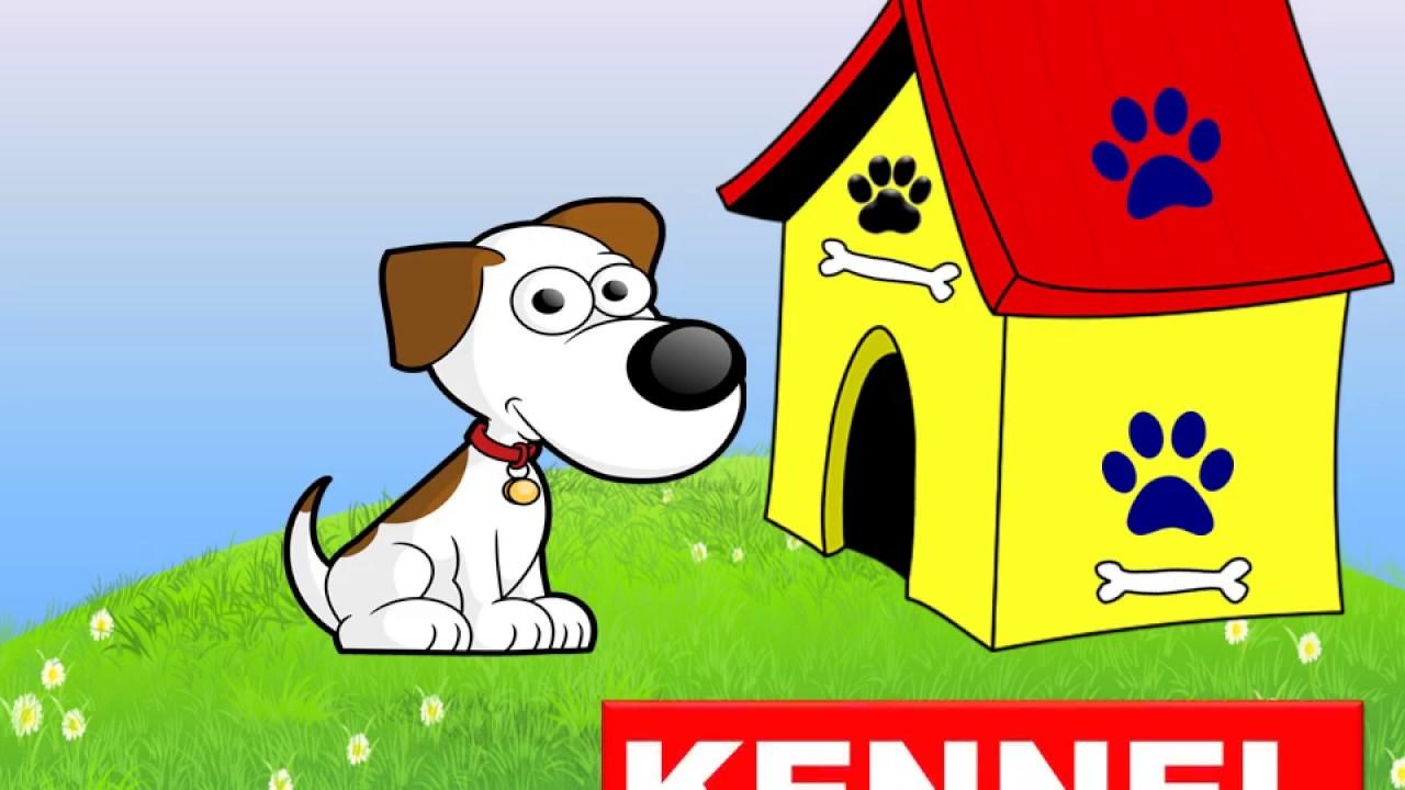 animals homes names, types lesson for kids kindergarten