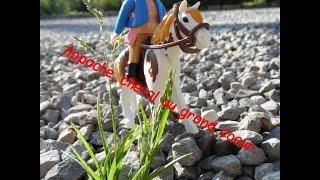 Appache, cheval au grand coeur... Episode 1