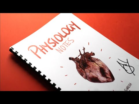 I Made A TEXTBOOK Out Of My Handwritten IPad Pro Notes - A Short Film