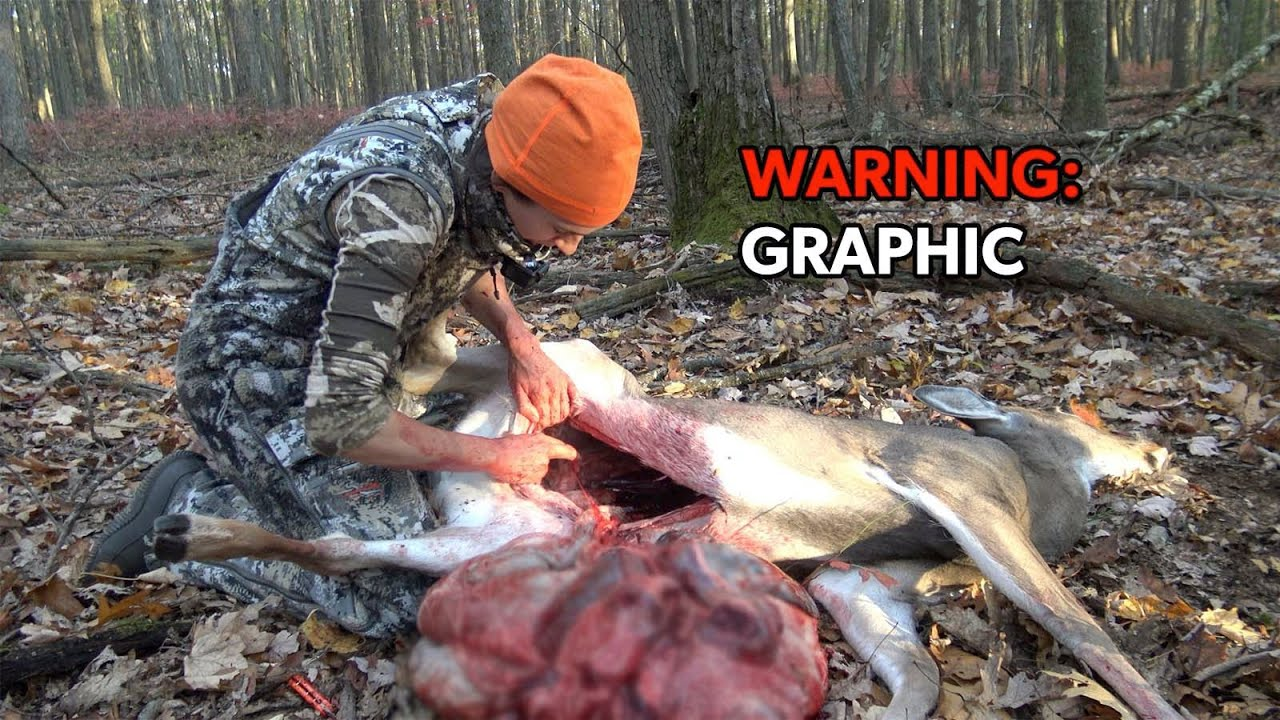 Download GRAPHIC: How to Field Dress - GUT a Deer