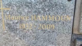 Jean Raine et le cimetière de Rochetaillée sur Saône- Michel Comte-
