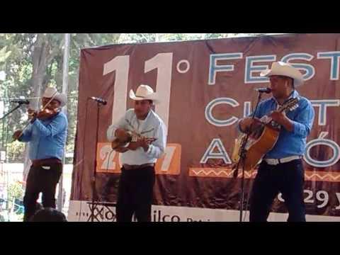 Festival autoctono Xochimilco 2017