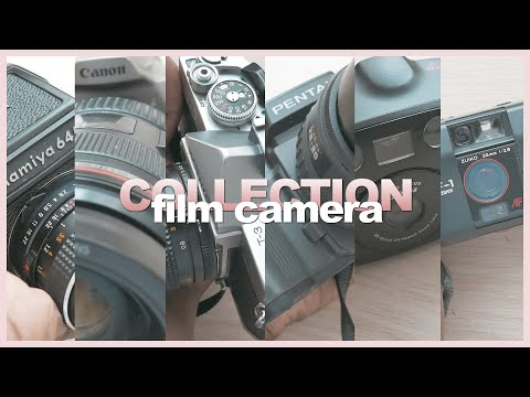My Film CAMERA COLLECTION