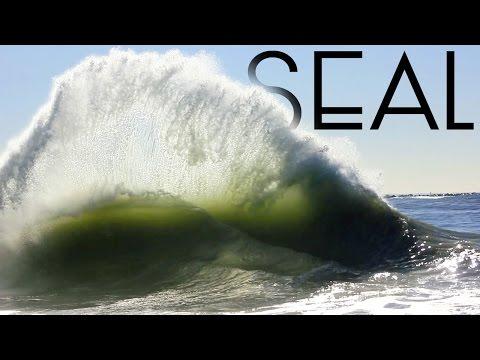Seal | December 12th | 2015