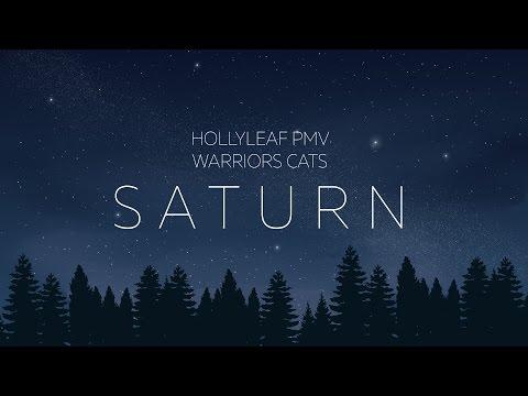 [WARRIORS] Hollyleaf PMV Saturn