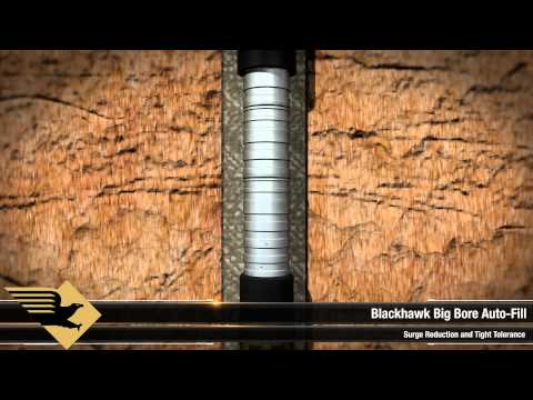 Blackhawk Specialty Tools - Deepwater Cementing Technologies