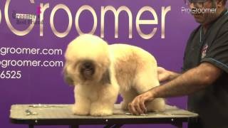 How to groom a Lhasa Poo  Pet Trim  Grooming Guide  Pro Groomer